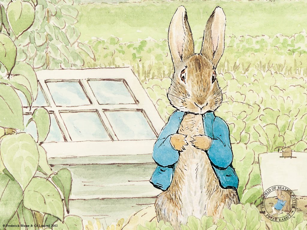 Pictures-of-peter-rabbit
